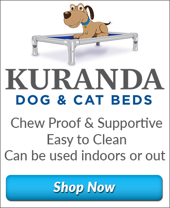 Kuranda Dog and Cat Beds - Chew Proof and Supportive - Easy to Clean - Can be used indoors or out - Shop Now